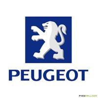 Peugeot Brake Kits